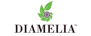 www.diameliagem.com